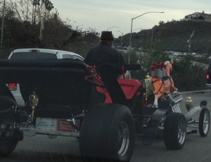I see the craziest things on the road - A Carousel Horse Drawn Carriage